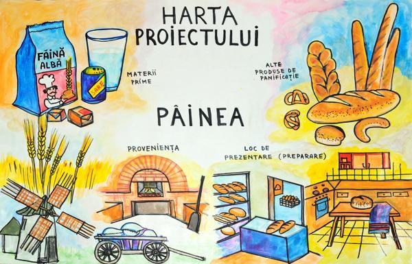 Pâinea - harta proiectului